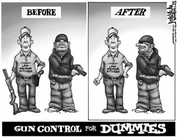 Changing Gun Laws 3