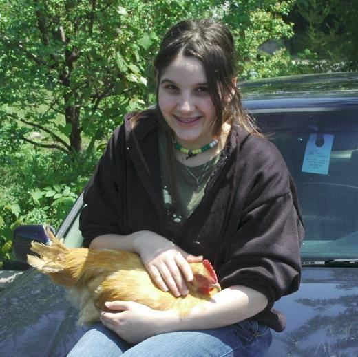 The Chicken Saga 2