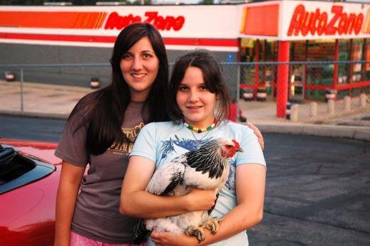 The Chicken Saga 3