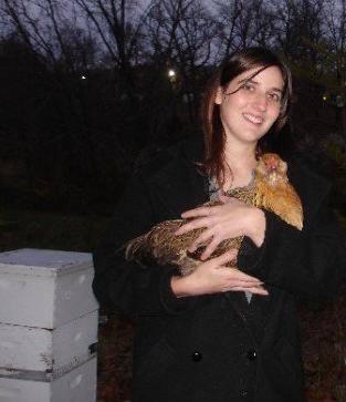 The Chicken Saga 4