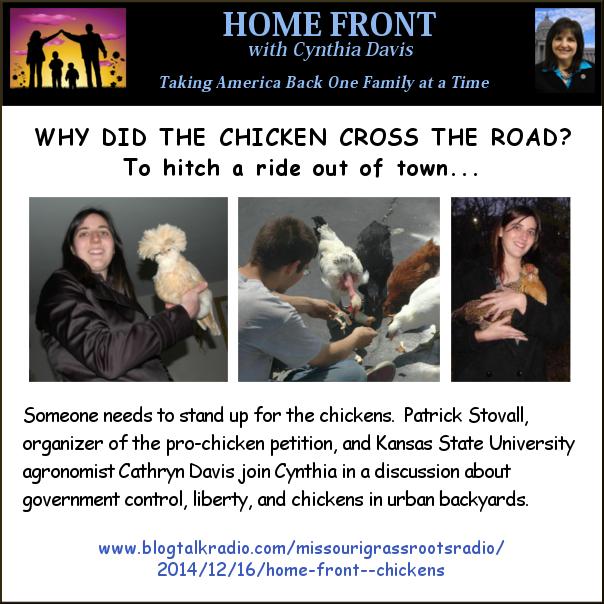 The Chicken Saga 5