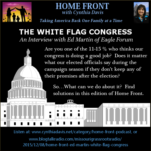 White Flag Congress 3