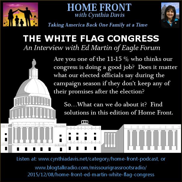 White Flag Congress 3