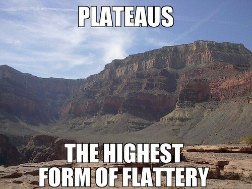 plateaus-are-the-highest-form-of-flattery